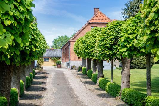 Planteavlsgård på Stenstrupvej i Højby - Ejendommen