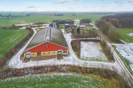 Kvæggård på Hyrup Skovvej i Toftlund - Luftfoto