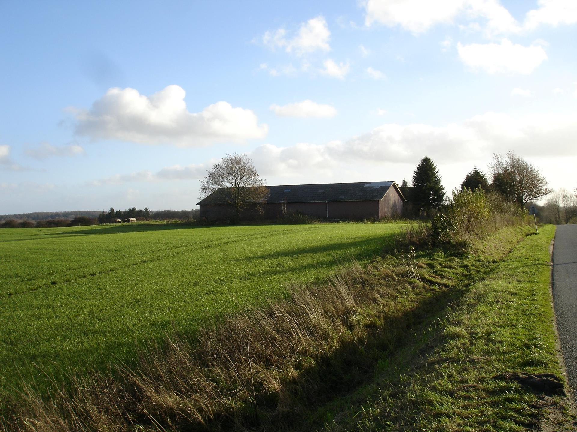 Kvæggård på Lille Vedbølvej i Vojens - Andet