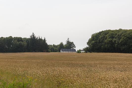 Planteavlsgård på Østerlundvej i Brørup - Andet