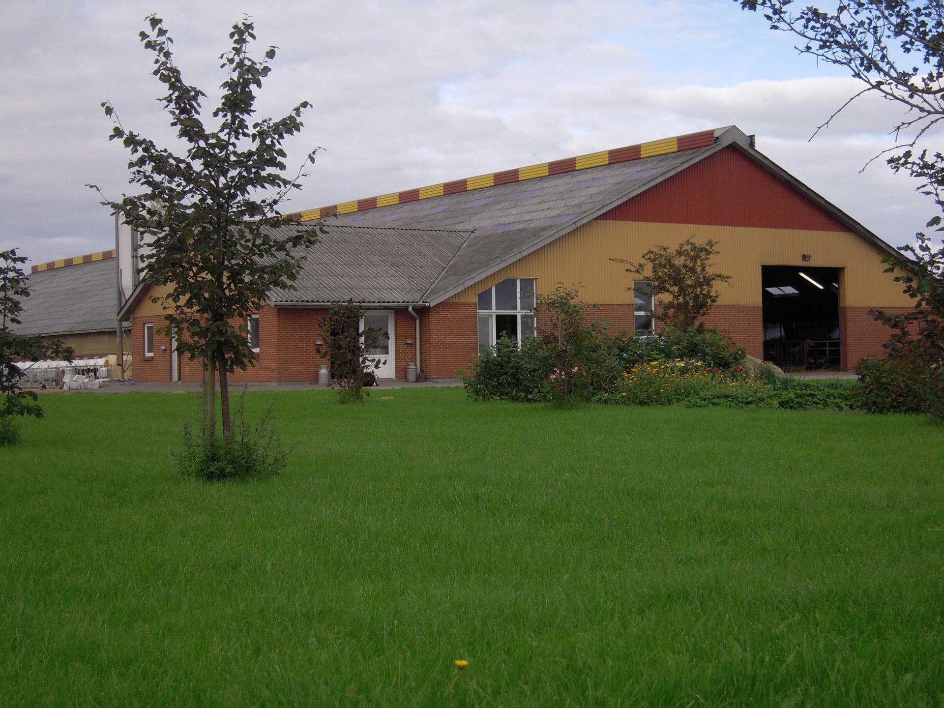 Kvæggård på Bremvej i Rødding - Andet
