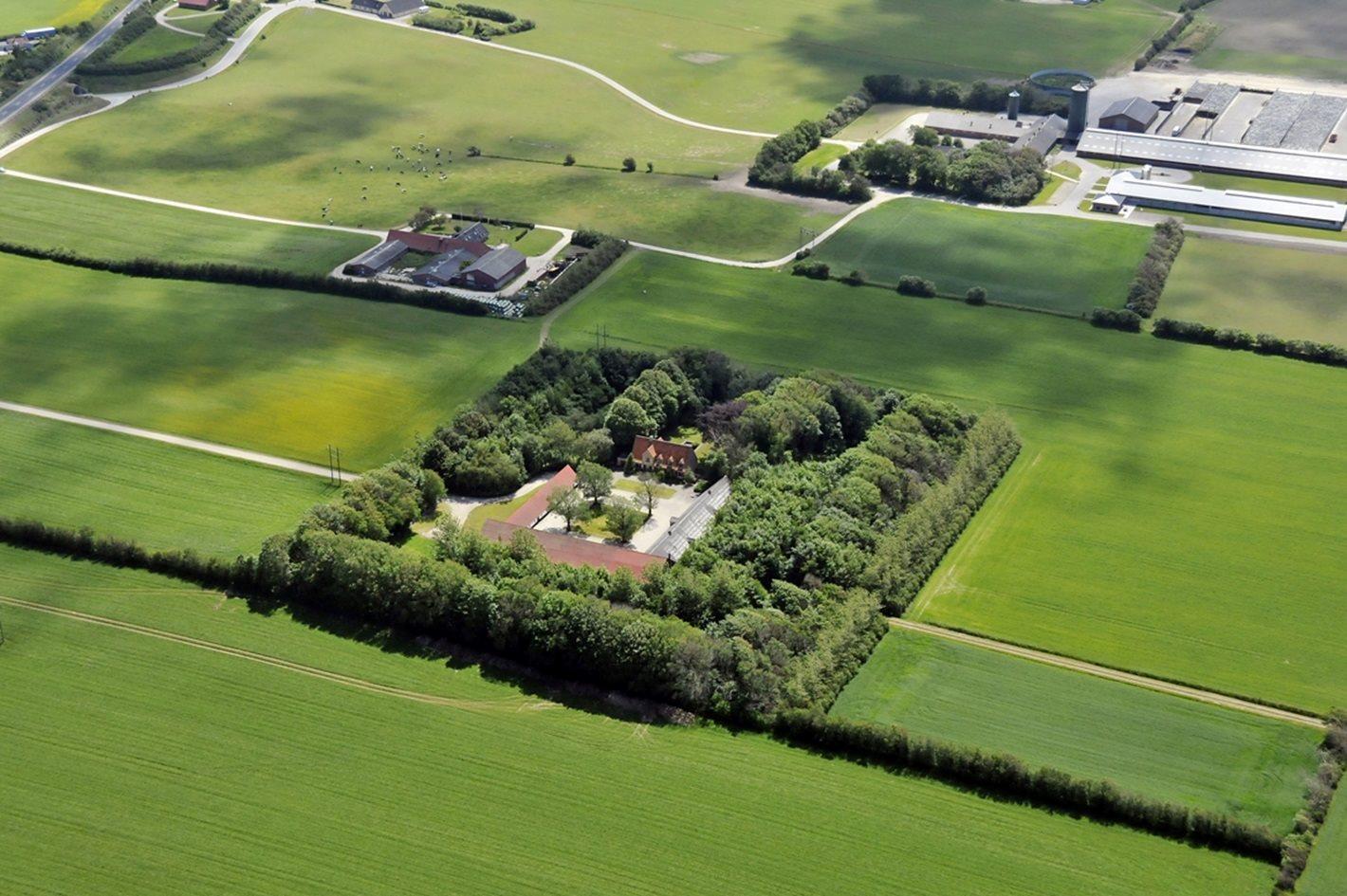 Kvæggård på Hvidhøjvej i Thisted - Andet