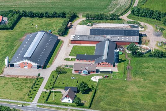 Kvæggård på Sønderfenner i Ribe - Andet