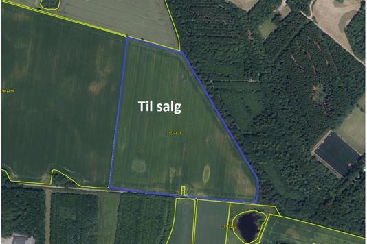 Landbrugsjord/skovbrug på Gerlof Juhlers Vej i Vojens - Andet