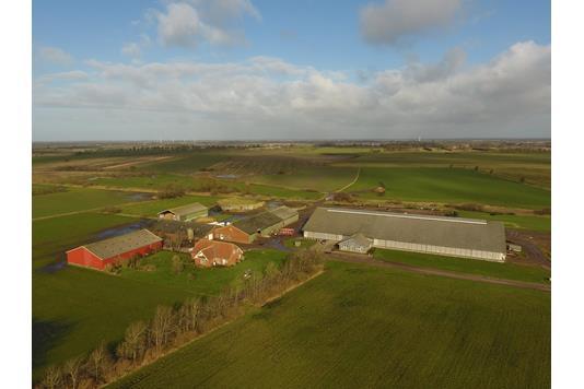 Kvæggård på Ny Boskovvej i Bylderup-Bov - Andet