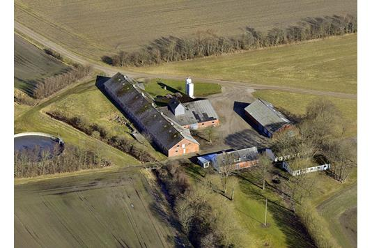 Svinegård på Holmevej i Struer - Bar