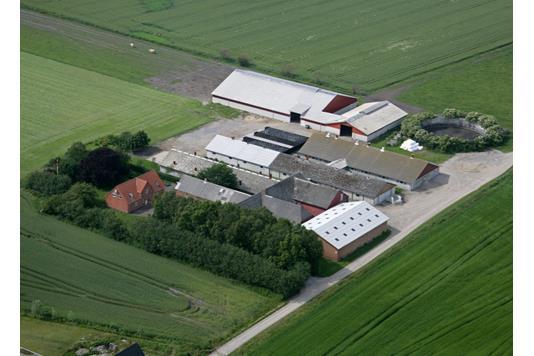 Svinegård på Korupvej i Hadsund - Andet