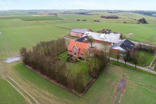 Planteavlsgård på Lucernemarken i Struer - Andet