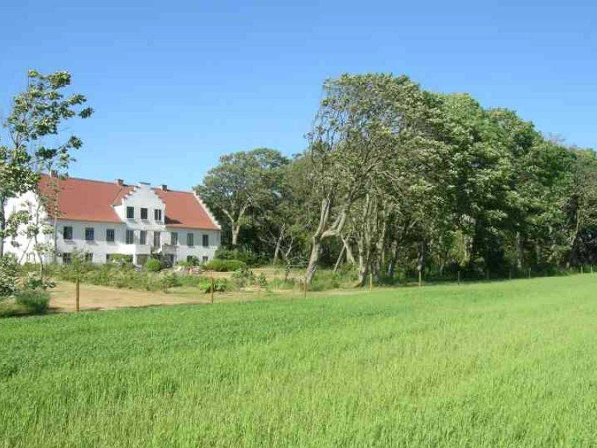 Kvæggård på Vinstrupvej i Hjørring - Andet