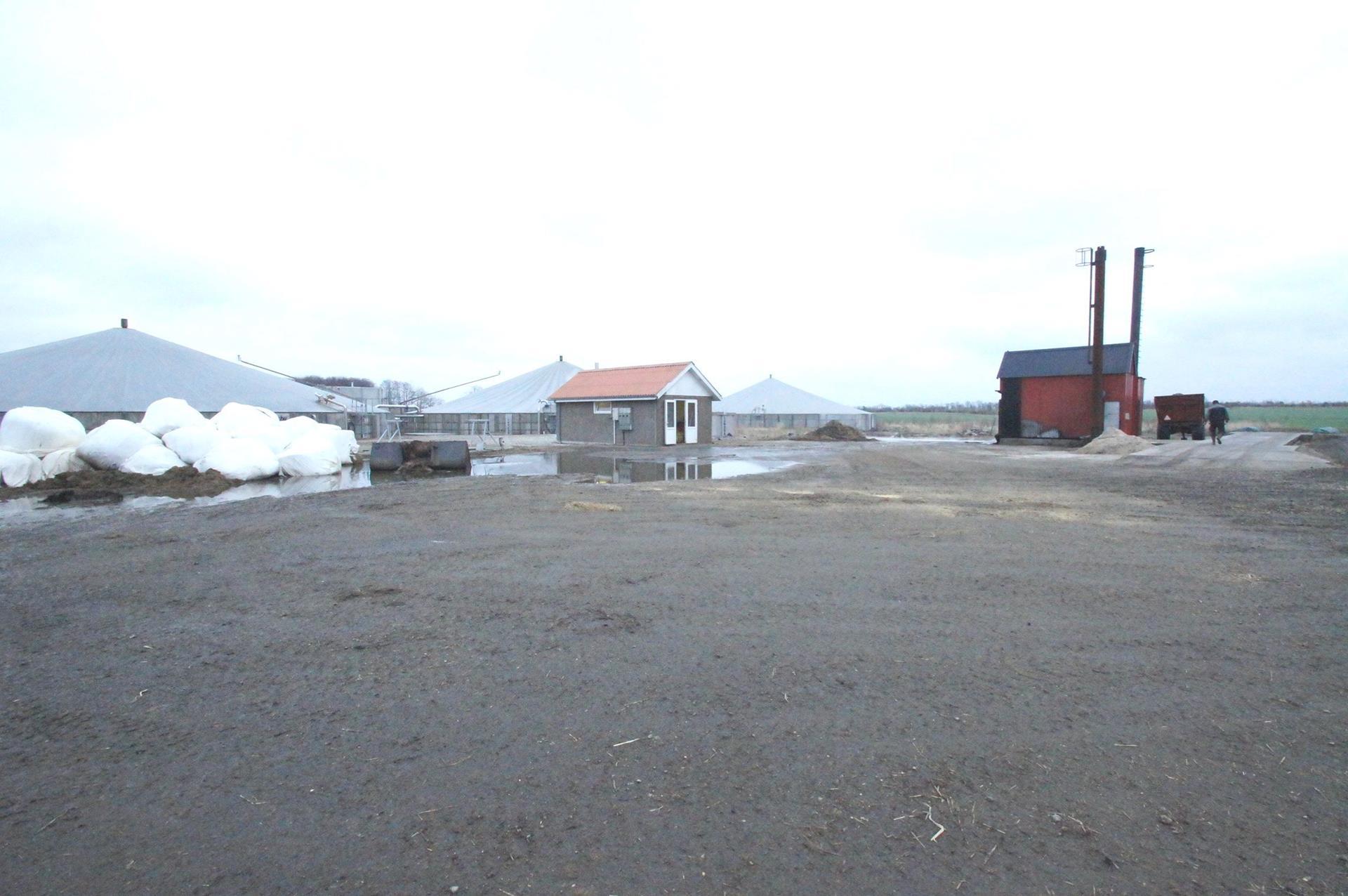 Kvæggård på Nørgaardsvej i Gedsted - Biogasanlæg