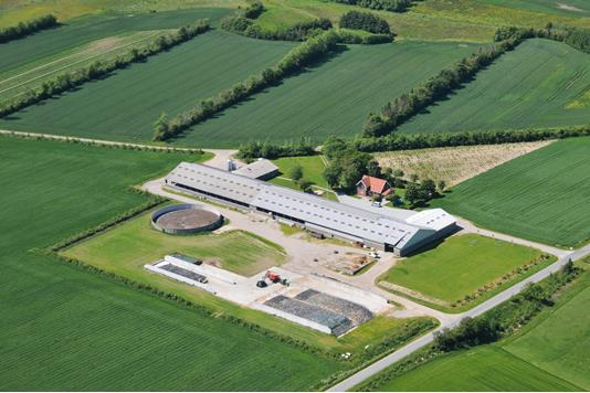 Kvæggård på Søndermøllevej i Hjørring - Ejendommen