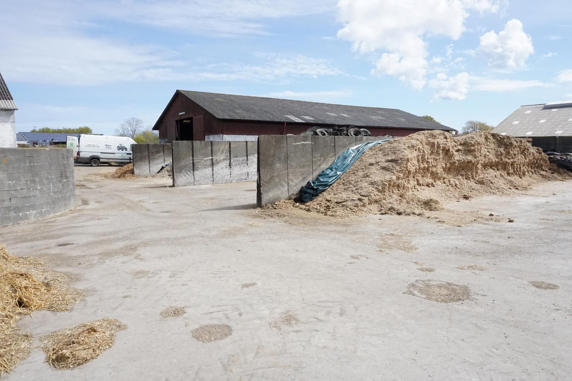 Kvæggård på Søndervangsvej i Sjællands Odde - Ensilageplads