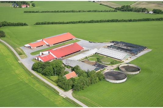 Kvæggård på Agervej i Hjørring - Andet