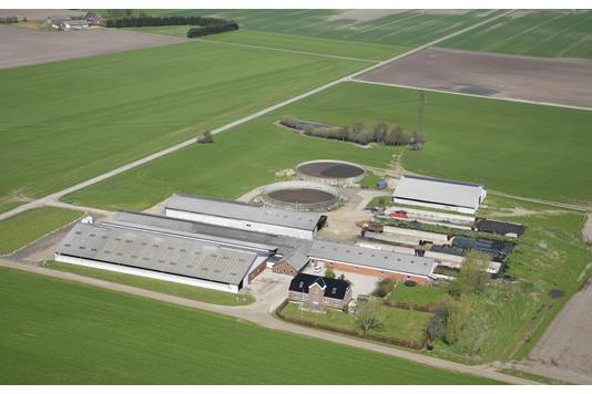 Kvæggård på Hvidkildevej i Dronninglund - Forsidebillede