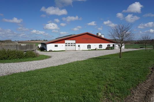 Kvæggård på Bolejevej i Sindal - Ejendommen