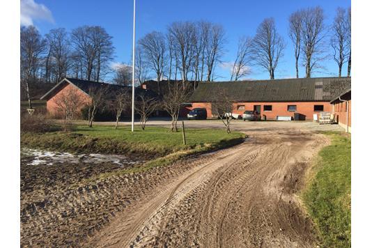 Kvæggård på Tyrsigvej i Sindal - Forsidebillede