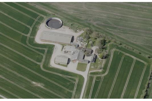 Svinegård på Tingstedvej i Øster Assels - Forsidebillede