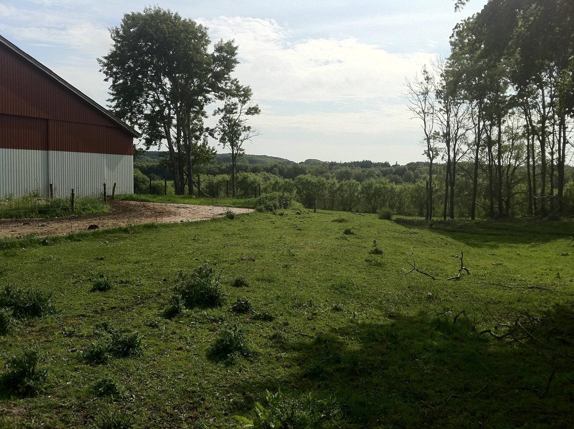 Planteavlsgård på Mosbjergvej i Sindal - Udsigt