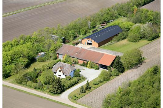 Planteavlsgård på Rønholtvej i Bindslev - Ejendommen