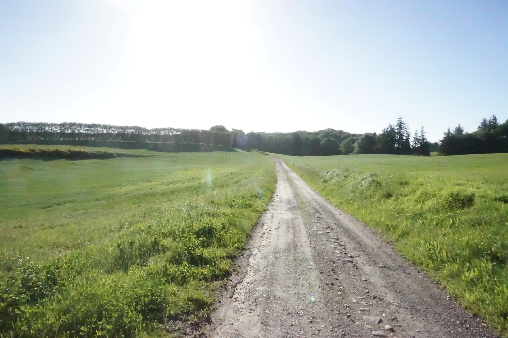 Planteavlsgård på Dorfvej i Dronninglund - Indkørsel