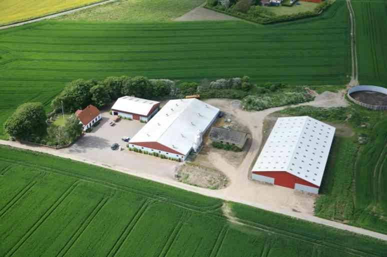 Planteavlsgård på Tystrupvej i Store Fuglede - Ejendommen set fra syd