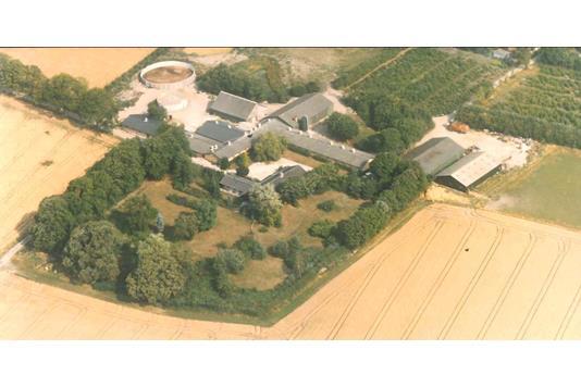 Planteavlsgård på Alstedvej i Fjenneslev - Ejendommen