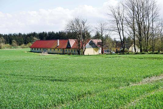 Planteavlsgård på Øster Hjelmstedvej i Jerslev J - Forsidebillede