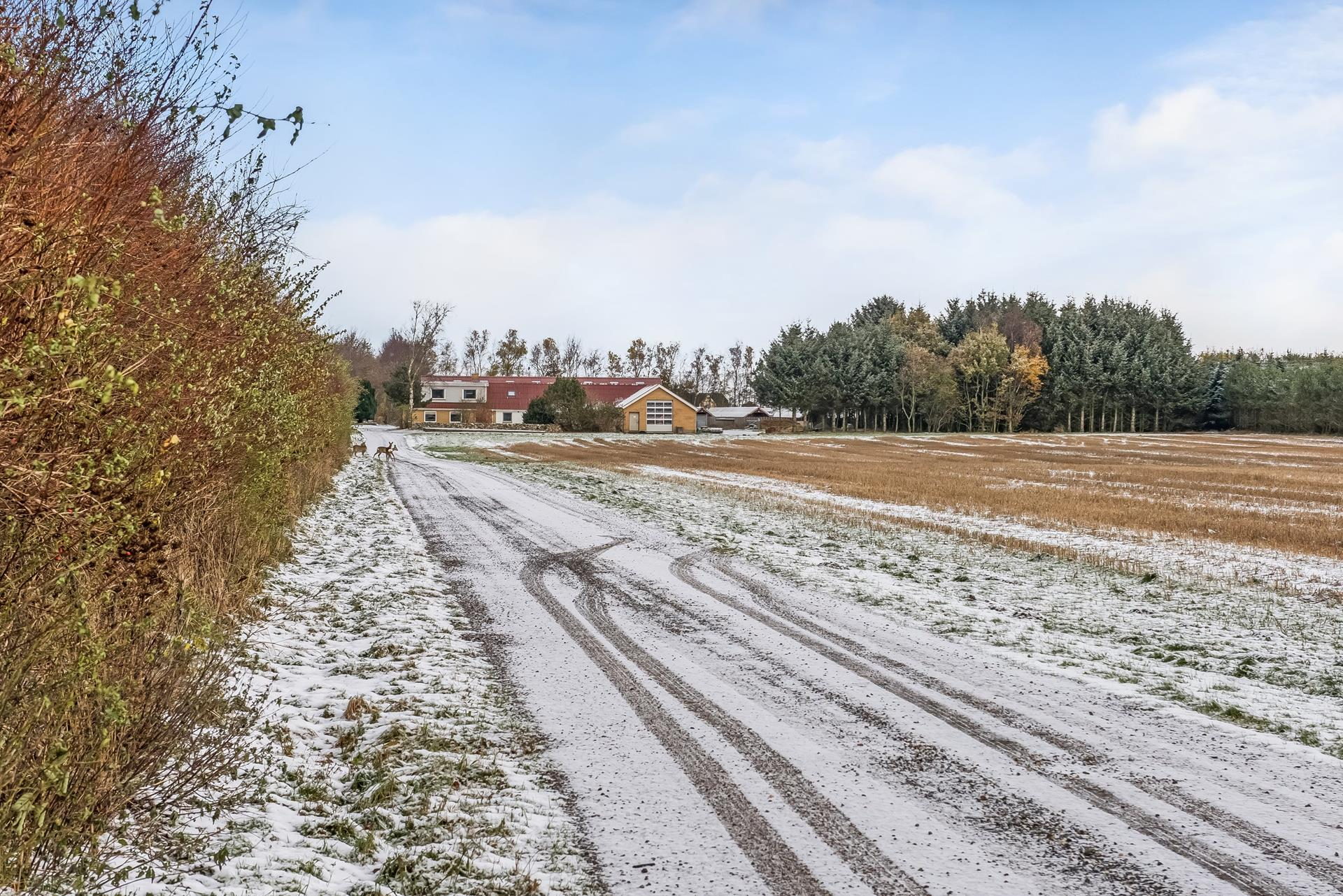 Andet på Vejby Sønderhede i Vrå - Indkørsel