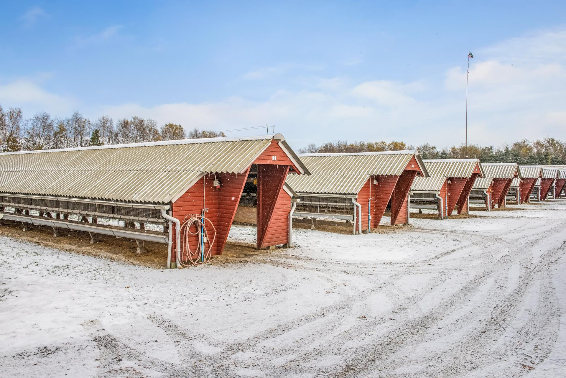 Andet på Vejby Sønderhede i Vrå - Minkhaller
