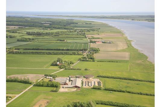 Kvæggård på Sønderskovvej i Gandrup - Andet