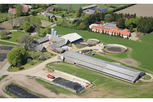 Kvæggård på Rydalsvej i Tjele - Andet