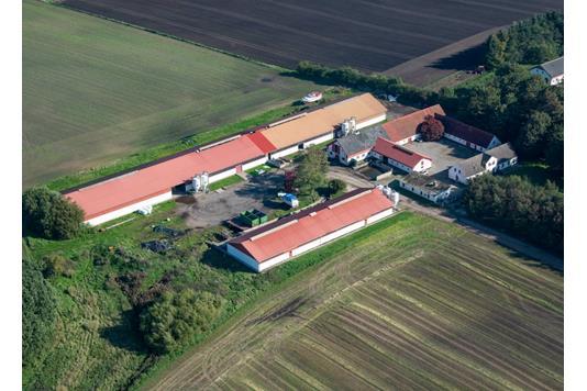 Planteavlsgård på Ålborgvej i Dybvad - Andet