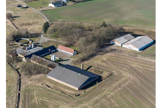 Svinegård på Mølholtvej i Dronninglund - Andet