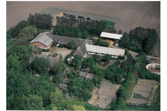 Planteavlsgård på Mejerivej i Aalestrup - Andet