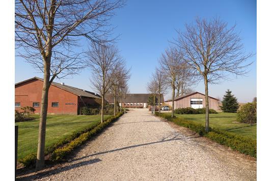 Planteavlsgård på Galtenvej i Hadsten - Andet