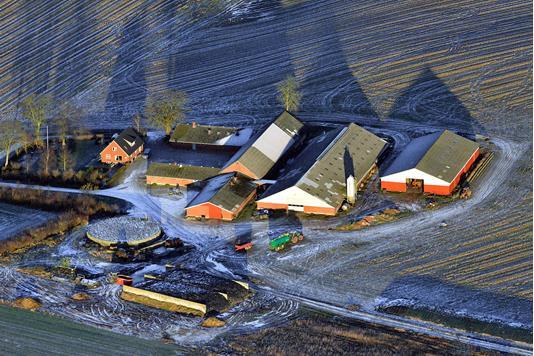 Kvæggård på Andivej i Mørke - Luftfoto