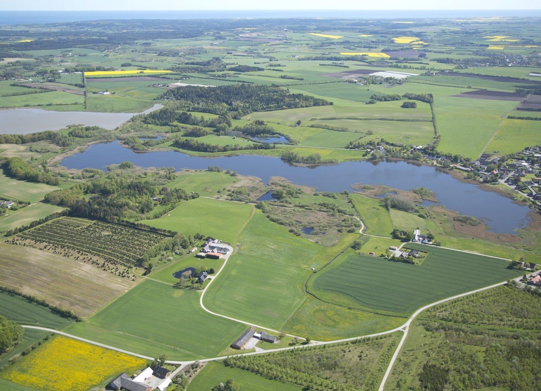 Landbrugsjord/skovbrug på Ramten Hedevej i Ørum Djurs - Andet