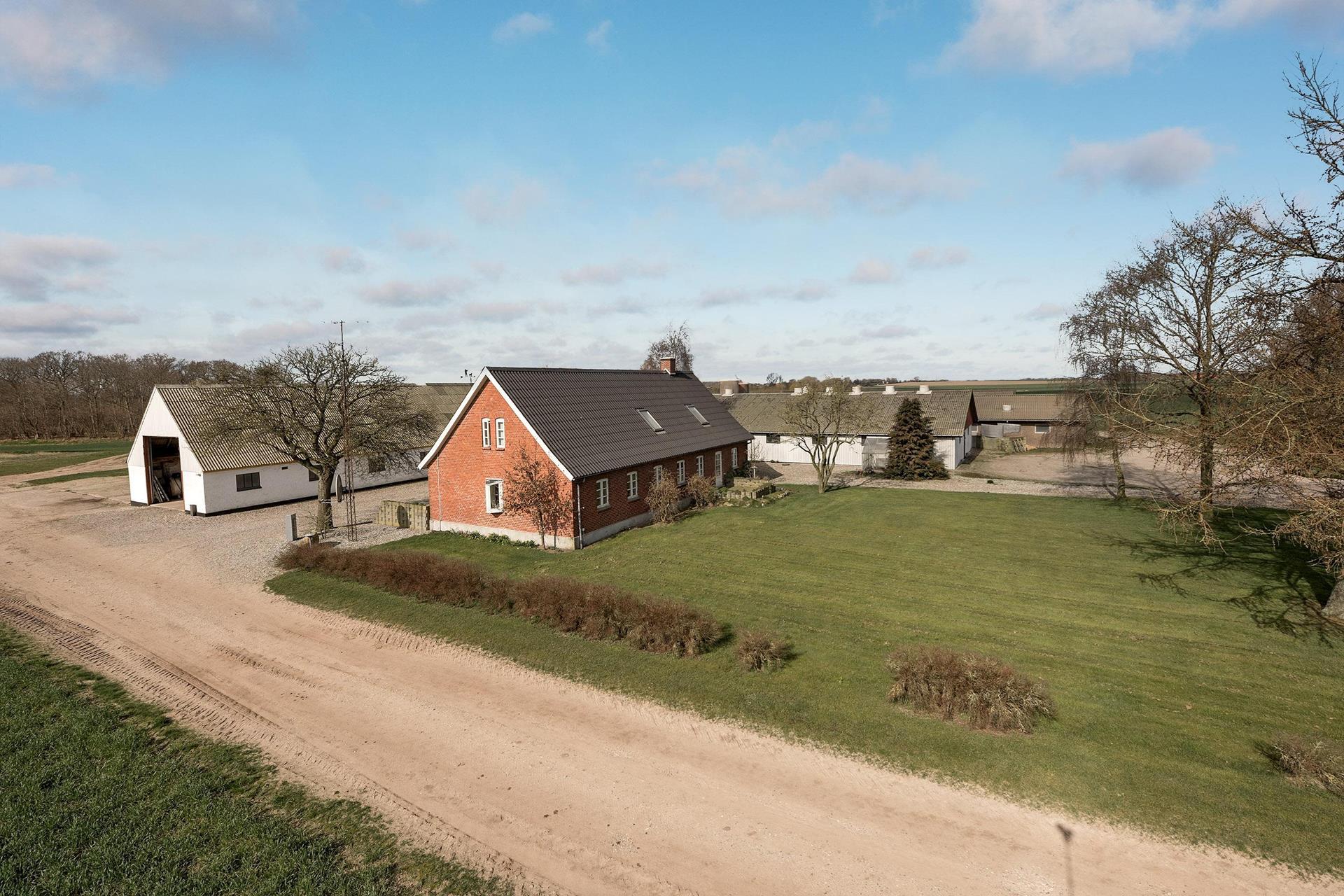 Planteavlsgård på Bogmose i Bogense - Ejendommen