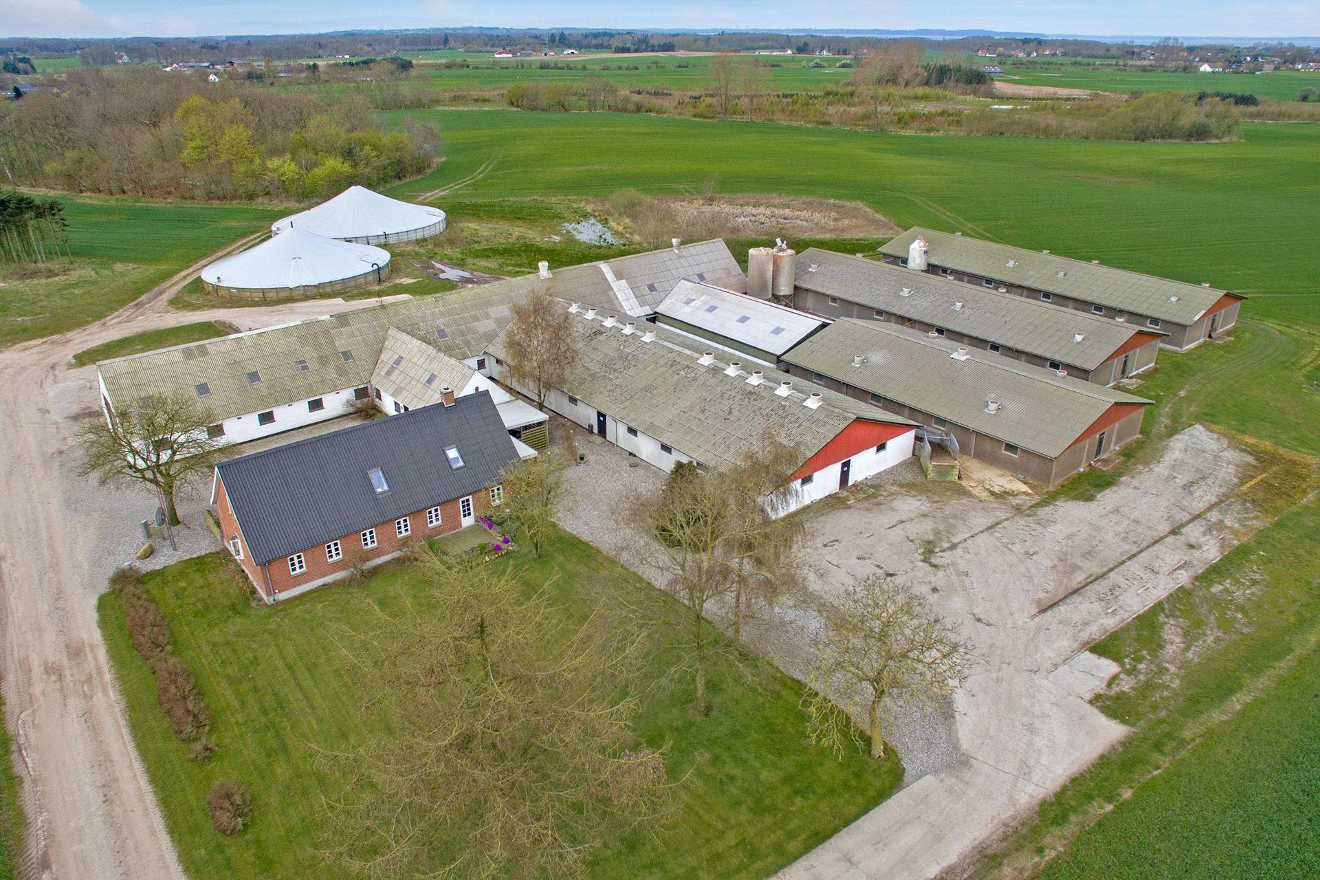 Planteavlsgård på Bogmose i Bogense - Luftfoto