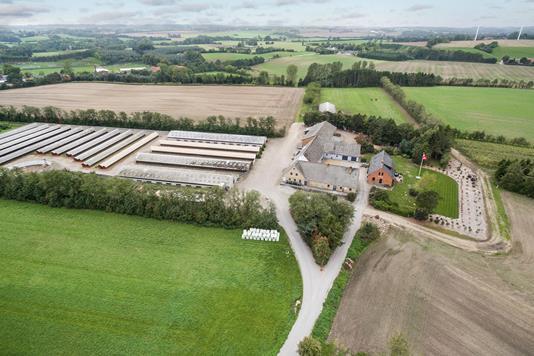 Planteavlsgård på Svendborg Landevej i Frørup - Luftfoto
