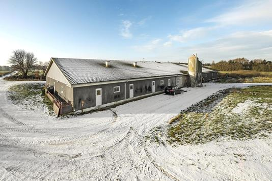 Svinegård på Fjellebrostræde i Mesinge - Andet